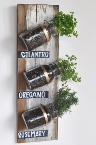 Indoor-mason-jar-herb-garden